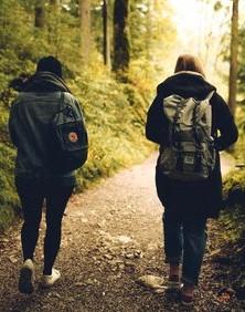 forest-friends-friendship-grass-591216